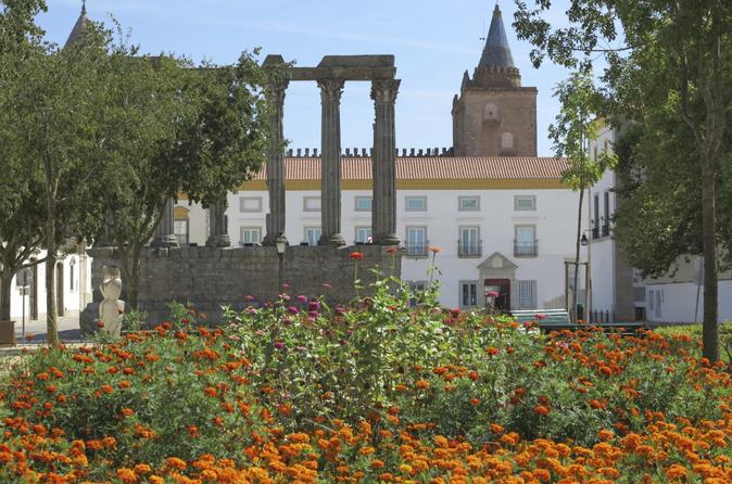 Viagem de um dia para grupo pequeno até Évora saindo de Lisboa com degustações de azeites