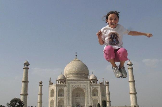 Excursão privada: viagem de uma dia para Agra e Taj Mahal saindo de Deli
