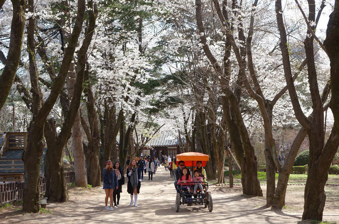 Day Trip to Nami Island and Everland from Seoul