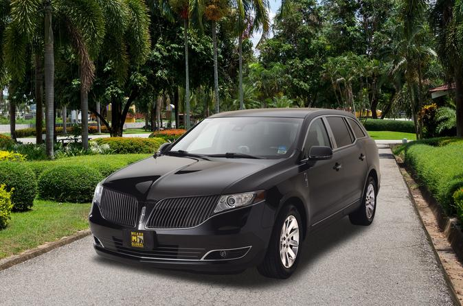 Private Tampa Transfer: Cruise Port to Airport or Hotel