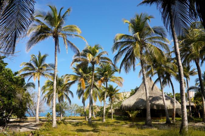 Viagem de um dia às ilhas Rosário saindo de Cartagena