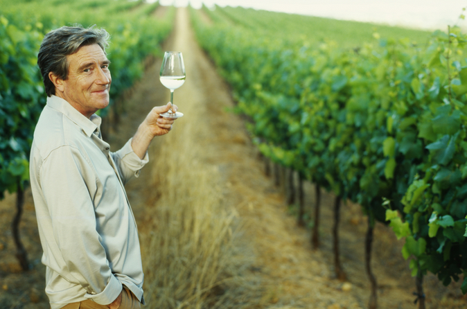 Excursão pelo Vale do Douro para degustação de vinhos do Porto incluindo almoço