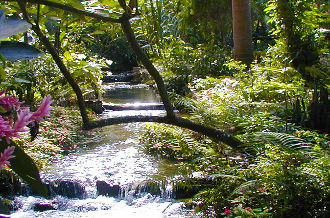 Private Tour From Ocho Rios To Konoko Falls And Garden and Shopping