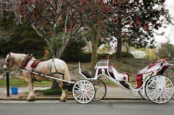 Passeio privado de carruagem no Central Park
