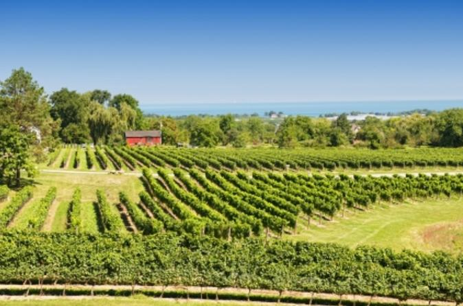 Private Tour: Niagara Falls Wineries