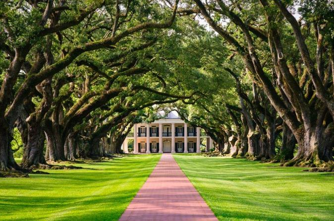 Full-Day Oak Alley and Evergreen Plantations from New Orleans