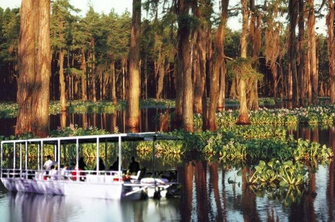 Oak Alley and Laura Plantation Plus Swamp Tour from New Orleans
