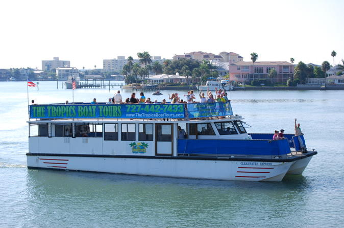 Clearwater dolphin watching tour in clearwater beach 112563