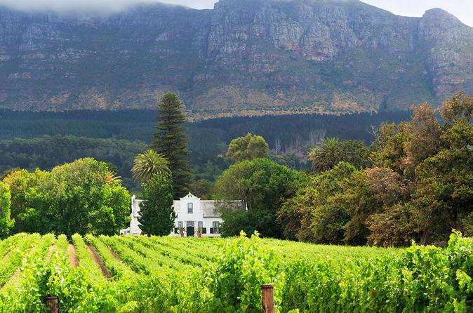 Excursão privada: Stellenbosch, Franschhoek e degustação de vinhos em Paarl Saindo da Cidade do Cabo