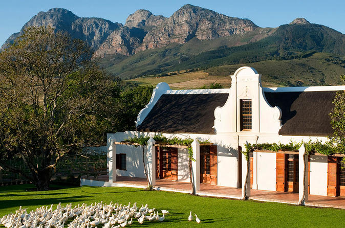 Private Tour: Stellenbosch Winelands Taste Tour from Cape Town