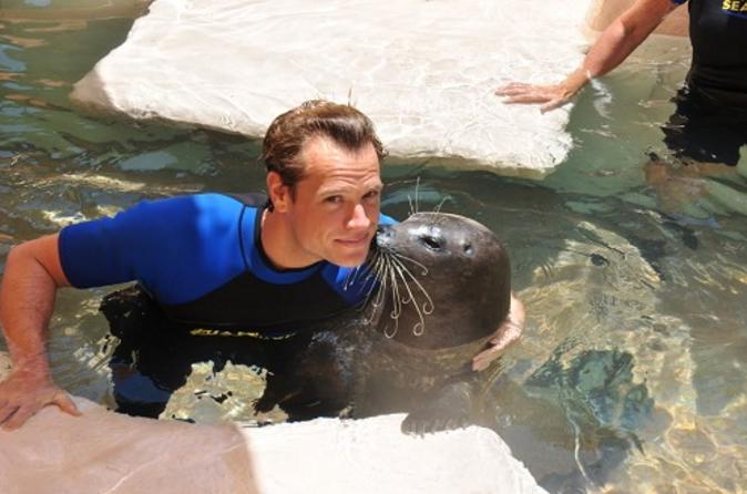 Zwem met zeehonden bij het Miami Seaquarium