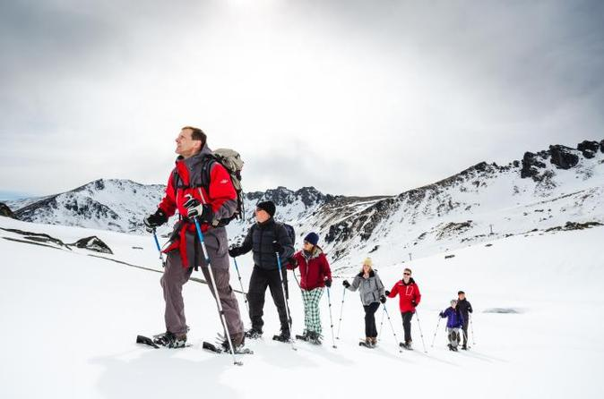 Backcountry Snowshoeing Tour from Queenstown