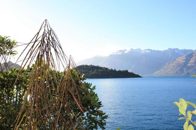 Lake Wakatipu Nature Walking Tour from Queenstown