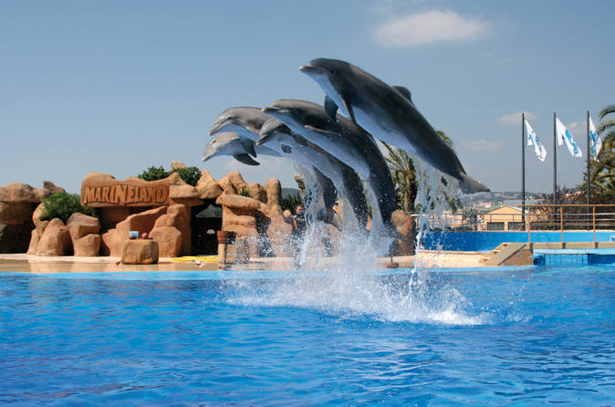 Marineland dolphins show and water park admission ticket for Pool show barcelona