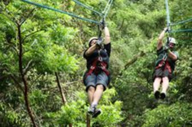 Mombacho volcano nature reserve hiking and ziplining tour in managua 115932