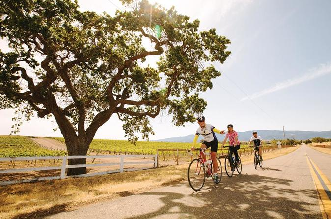 Wine Country Farm to Table Bike Tour