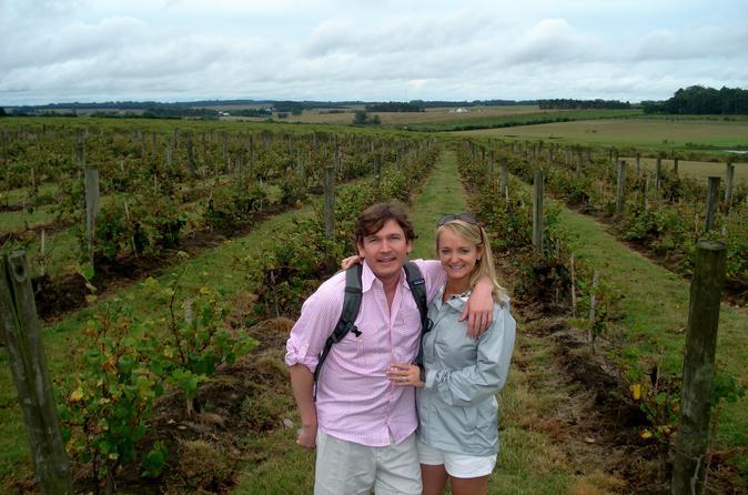 Excursão para grupos pequenos: excursão com degustação de vinho saindo de Montevidéu