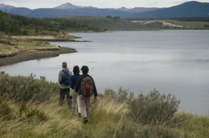 Eco-aventura na Terra do Fogo: Canoagem no Estreito de Beagle, Colônia de pinguins e Ilha Gable