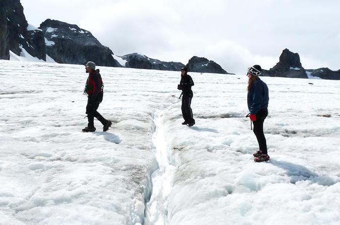 Excursão de dia inteiro a pé para Glaciar do Olho Albino saindo de Ushuaia