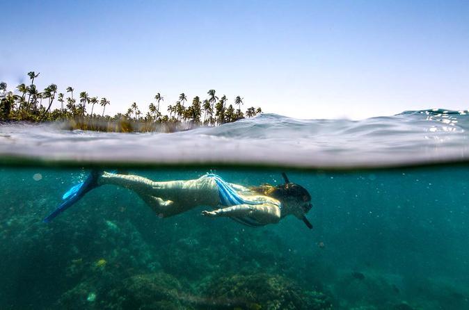 Excursão de snorkel em Rio da Prata partindo de Bonito