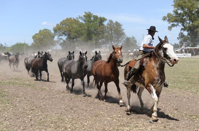 Excursão Gaúcho de dia partindo de Buenos Aires: Rancho Don Silvano
