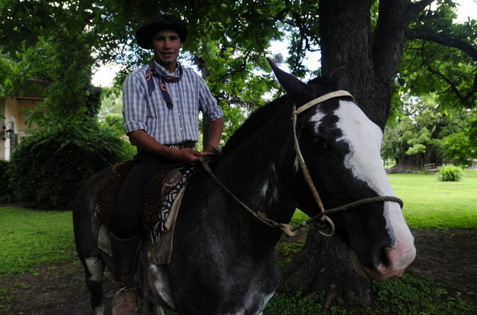 Passeio Gaúcho de dia, partindo de Buenos Aires: Rancho Santa Susana