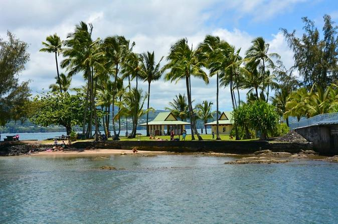 Hawaii Big Island Circle Small Group Tour: Waterfalls - Hilo - Volcano - Black Sand Beach