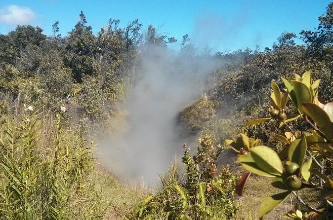 Hilo Hot Steam Volcano Tour: Waterfalls - Big Island Candies - Black Sand