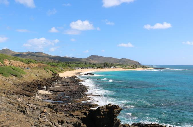 Oahu Private Island Tour: Waikiki, North Shore, and the Dole Plantation