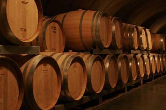 Excursão de vinho em Mendoza com almoço
