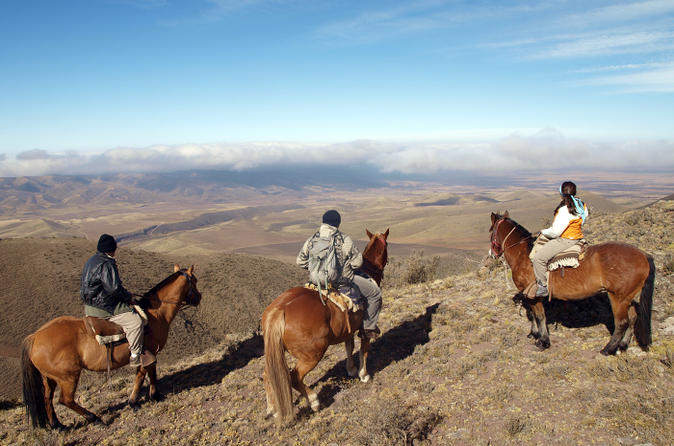 Mendoza horseback riding tour with traditional argentine asado in mendoza 151066