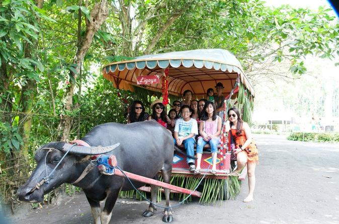 Villa escudero coconut plantation day trip from manila in manila 122865