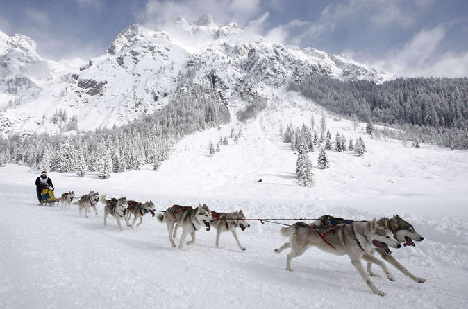 4-Day Northern Lights and Dog Mushing Adventure in Whitehorse