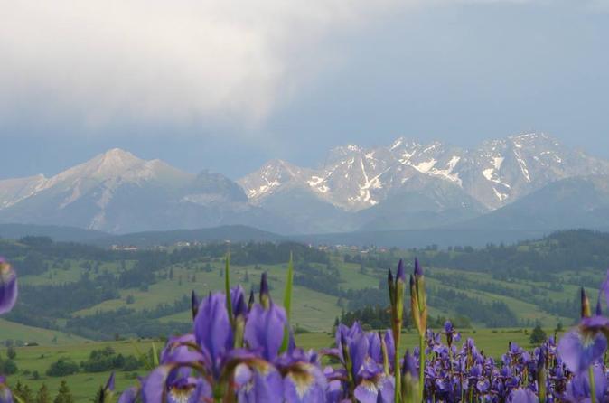 Zakopane and Tatra Mountains Guided Day Trip from Krakow