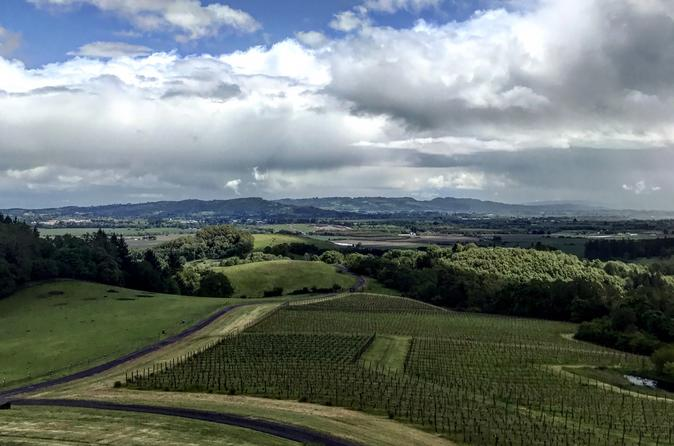 Small-Group Tour: Portland Highlights and Wine-Tasting Combo