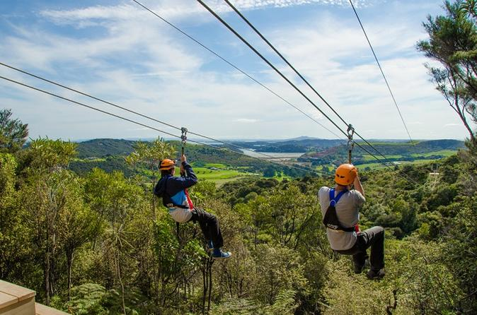 Auckland Shore Excursion: Waiheke Island Tour With Zipline Adventure