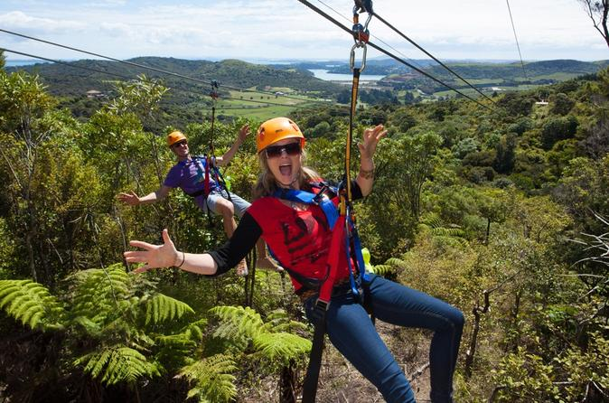 Waiheke island exploration and zipline day trip from auckland in auckland 125728