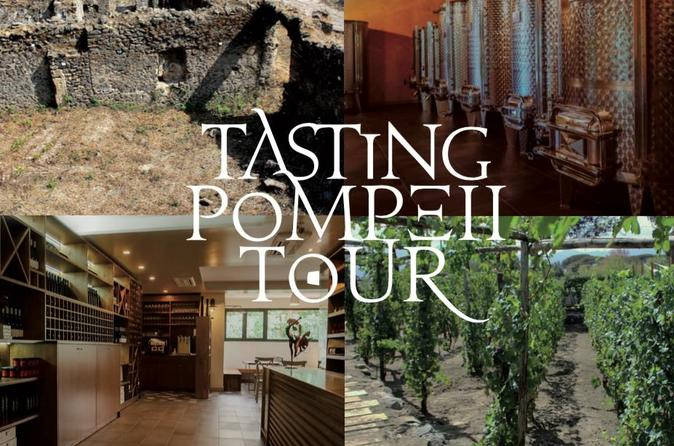 Private Tour Of Pompeii Ruins, Tasting Tour And Transfer For The Winery