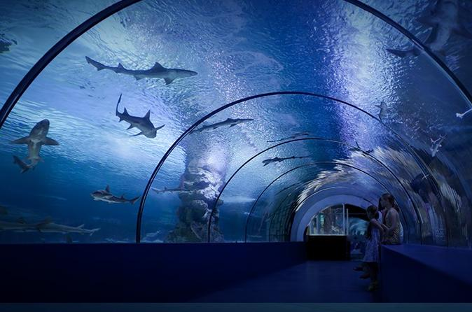Antalya Aquarium Ticket with Optional Transfer