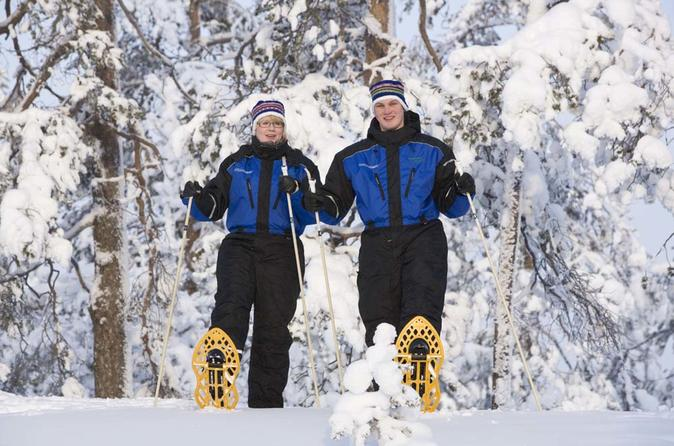 Snowshoe Trip For Searching Arctic Animals From Kemi