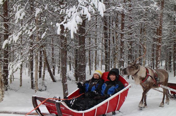 Visit An Authentic Reindeer Farm