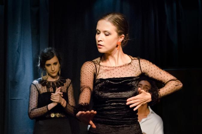 Seville 2-Hour Flamenco Tour, Show and Workshop