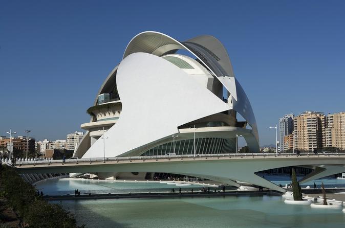 Palau de les Arts Reina Sofia Valencia Admission Ticket