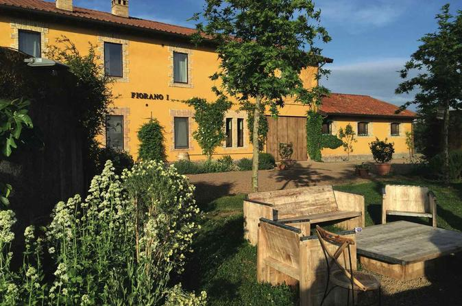 Private Tour: Lunch and Wine Tasting in a Roman Vineyard