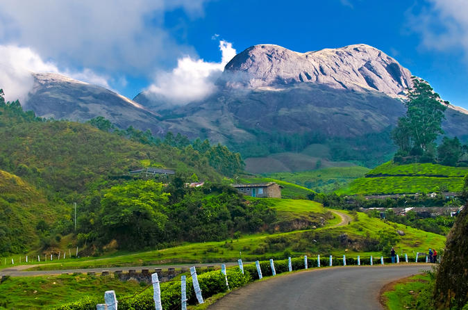 Private Custom Tour: Munnar Local Sightseeing With Guide