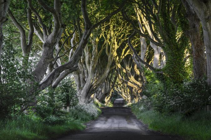 'Game of Thrones' and Giant's Causeway Full-Day Tour from Belfast