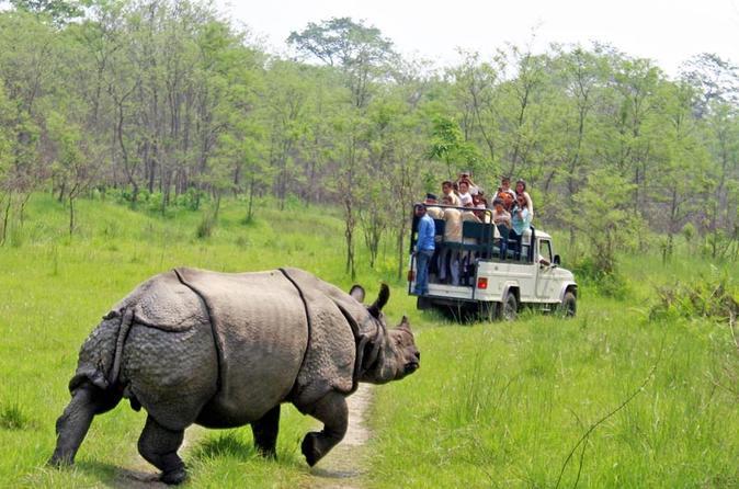 2 Night 3 Days Chitwan  Safari Tour