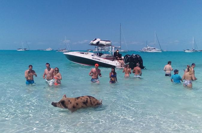 Excursão de dia inteiro para grupos pequenos para a Pig Beach com Lancha