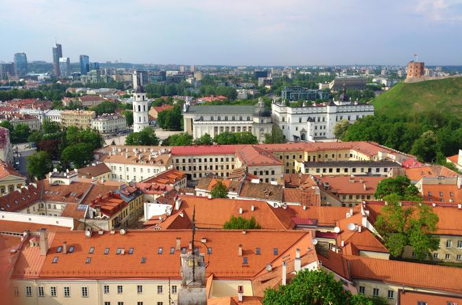 Small group food and history walking tour of vilnius in vilnius 175411