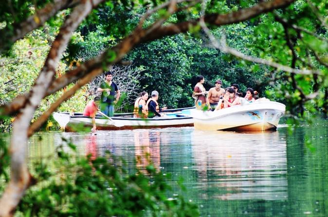 Turtle and Crocodile Eco Tour from Huatulco with Mangrove Boat Ride